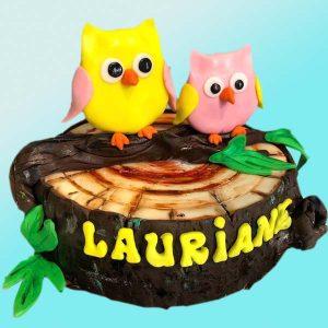 Детска торта с бухалчета D09 - Dolce Mela